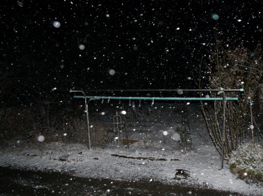20170207 夜の雪 w800 DSC08523.jpg