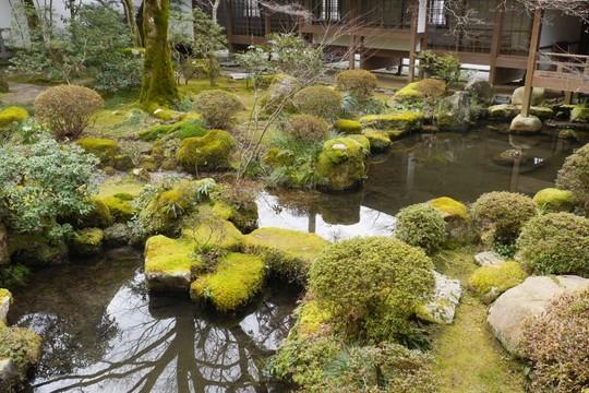 20180121113846 三千院 池のあるお庭 W1024 P1180442.jpg