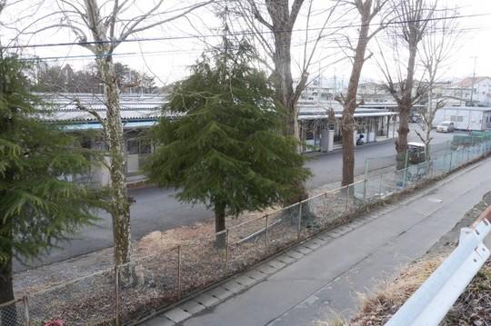 201802151414 気仙沼公園仮設 w800 P1190494.jpg