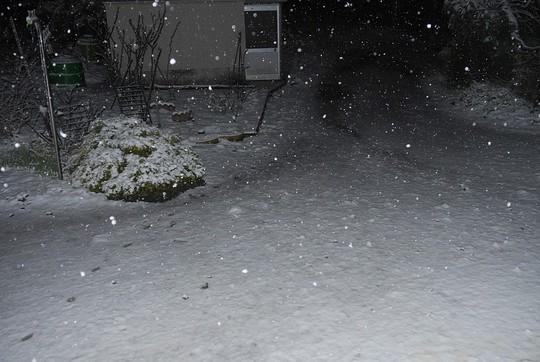 201903301832 庭の積雪 w1024 P1410465.jpg